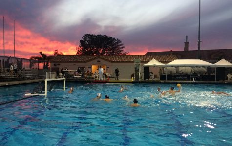 Boys Water Polo Wins CIF Quarter Finals for First Time