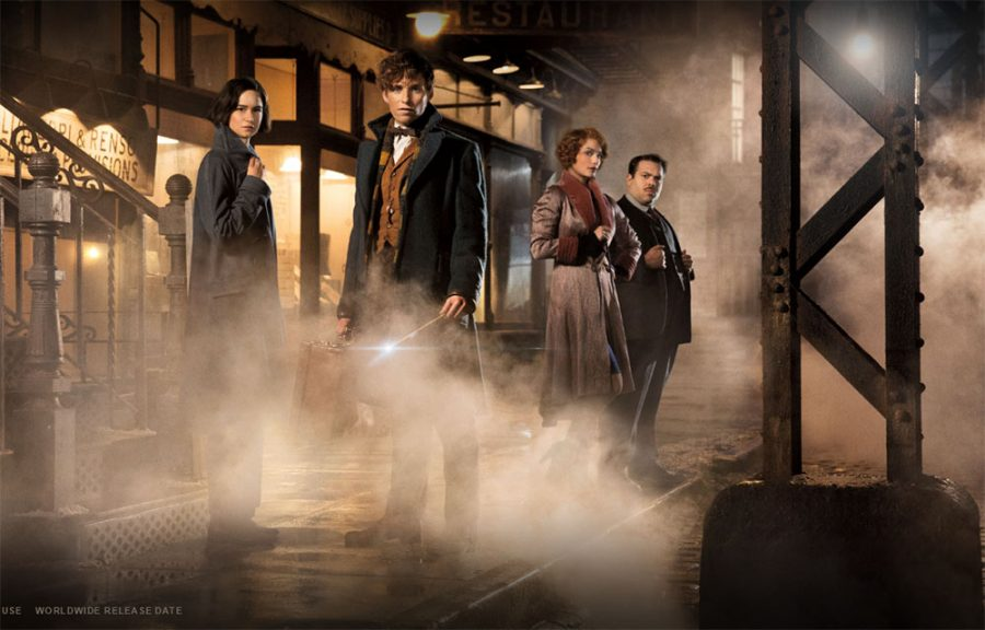 """Review: """"Fantastic Beasts and Where to Find Them"""""""