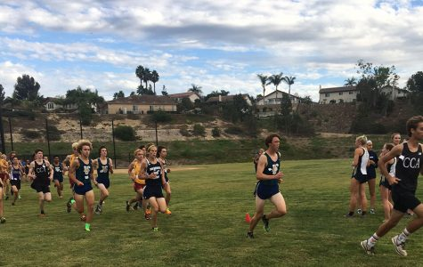 Hay Bales? Cross Country Takes on Final League Meet