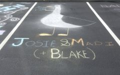 Josie Lieber's chalked spot featuring a seagull from