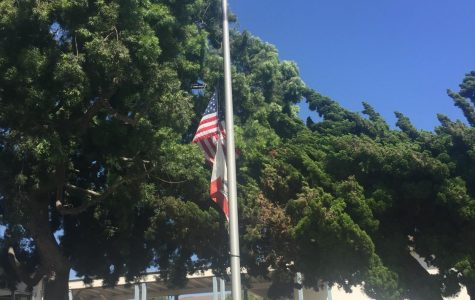 Today at SDA: Half Mast for McCain