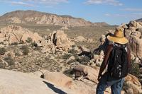 Joshua Tree is one of the many national parks being trashed during the government shutdown.