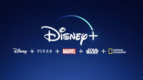 Disney+ offers a wide range of selections to choose from, making it a top competitor among other streaming services.
