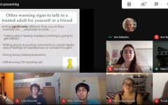 PALs present their slides on Suicide Prevention over on Google Meets