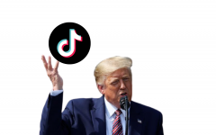Trump says he's given his blessings to TikTok's deal