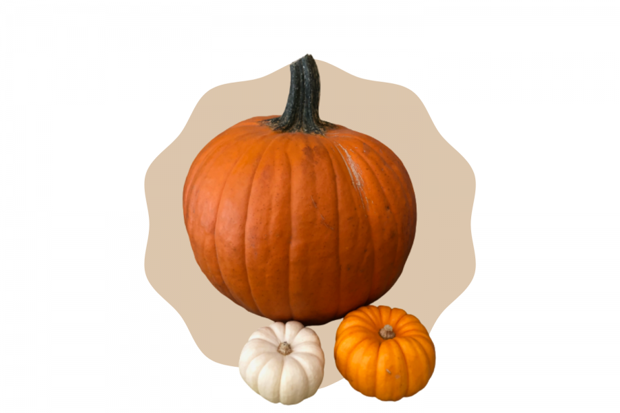 21 Halloween Costume Ideas